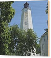 Sandy Hook Lighthouse Wood Print