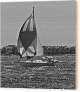 Sandy Hook Sailing II Wood Print