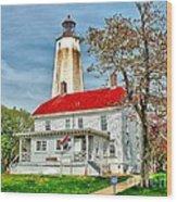 Sandy Hook Spring Wood Print