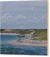 Sandy Neck Beach Wood Print