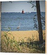 Sandy Pt Shoal Lighthouse And Blue Heron Wood Print