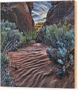 Sandy Trail Arches National Park Wood Print