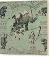 Sanger's Grand National Amphitheatre Wood Print
