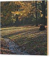 Sanilac Park Wood Print