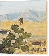 Santa Ana View Wood Print
