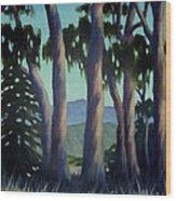 Santa Barbara Eucalyptus Grove Wood Print