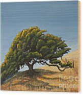Santa Clara Valley Wood Print
