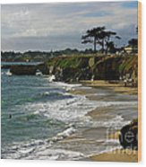 Santa Cruz Beach Wood Print