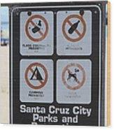 Santa Cruz Beach Sign At The Santa Cruz Beach Boardwalk California 5d23840 Wood Print by Wingsdomain Art and Photography