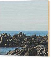 Santa Cruz Lighthouse Wide Wood Print