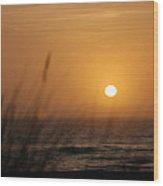 Santa Cruz Sunset Wood Print by Shane Kelly