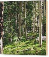 Santa Fe Aspen Woodland Forest Wood Print