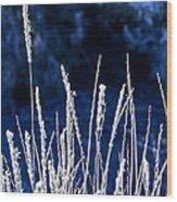 Santa Fe Grass 1 Wood Print