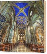 Santa Maria Sopra Minerva Wood Print