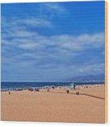 Santa Monica Beach California Wood Print