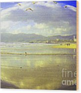Santa Monica Beach Wood Print