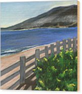 Santa Monica Overlook Wood Print