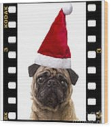 Santa Pug - Canine Christmas Wood Print by Edward Fielding