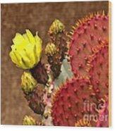 Santa Rita Cactus Wood Print