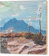 Santa  Rita Mts. Near Tucson Arizona Wood Print