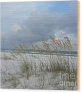 Santa Rosa Island National Seashore Wood Print