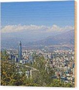 Santiago  Chile Wood Print