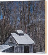 Sap House II Wood Print