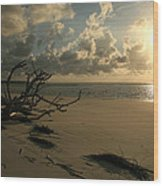 Sapelo Sunrise Wood Print