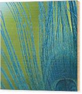 Sapphire 2 Wood Print