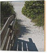 Sarasota Beach Walk Path. Wood Print
