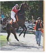 Saratoga Race Track Paddock Wood Print