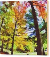 Saratoga Tree Wood Print