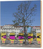 Sardine Outdoor At Pedro Iv Square Best Known As Rossio Square Wood Print