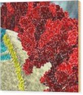 Sars Coronavirus Proteins, Artwork Wood Print