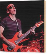 Satriani 3235 Wood Print