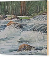 Sauble Falls Wood Print