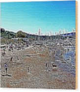 Sausalito Beach Sausalito California 5d22696 Artwork Wood Print