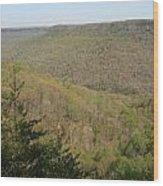 Savage Gulf Tennessee State Park IIi Wood Print