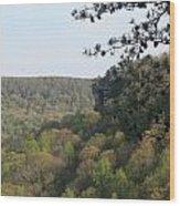 Savage Gulf Tennessee State Park Iv Wood Print