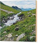 Savage River From Savage River Trail In Denali Np-ak    Wood Print