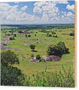 Savanna Landscape In Serengeti Wood Print