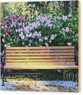 Savannah Bench Wood Print by Carol Groenen
