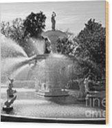 Savannah Fountain - Black And White Wood Print
