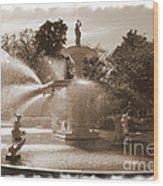 Savannah Fountain In Sepia Wood Print