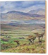 Savannah Landscape In Tanzania Wood Print