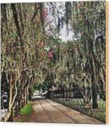 Savannah Moss Wood Print