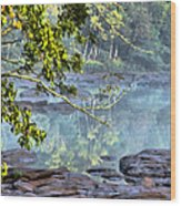 Savannah River In Spring Wood Print