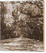 Savannah Sepia - The Old South Wood Print