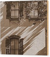 Savannah Sepia - Windows Wood Print