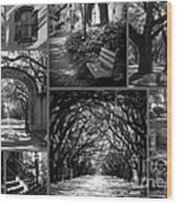 Savannah Shadows Collage Wood Print